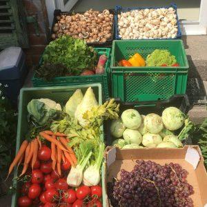 12 Uhr -Markt-Gemüse
